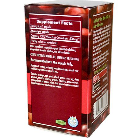 Cranberry, Homeopathy, Herbs
