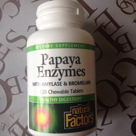 Supplements Digestion Papaya Digestive Enzymes Natural Factors