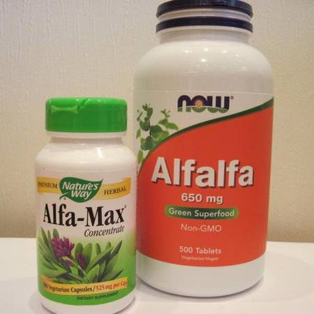 Now Foods Herbs Homeopathy Alfalfa