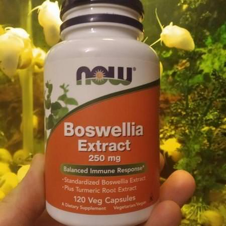 Now Foods Herbs Homeopathy Boswellia