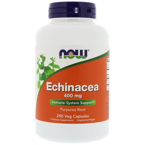 Now Foods, Echinacea, 400 mg, 250 Veg Capsules Review