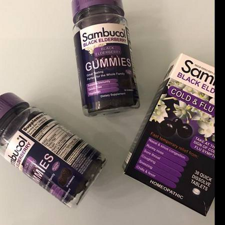 Herbs Homeopathy Elderberry Sambucus Supplements Sambucol